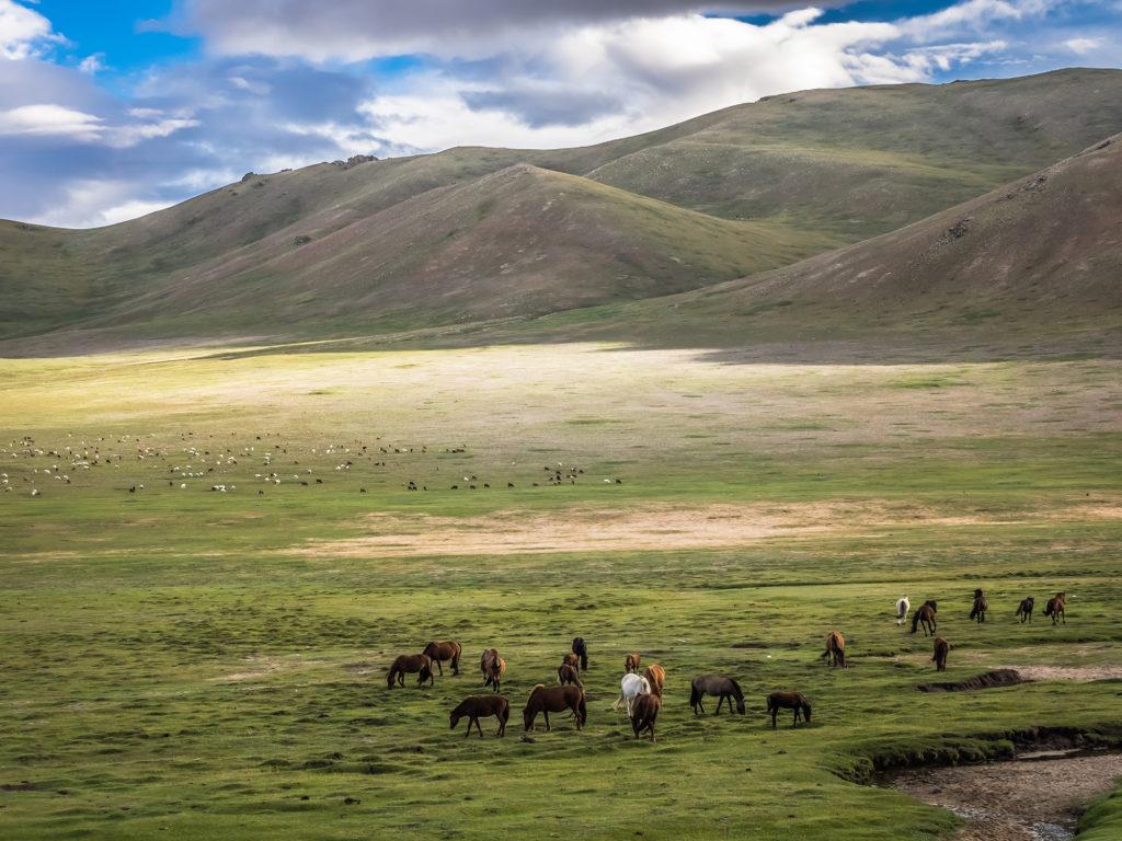 Bayankhongor Province, Mongolia
